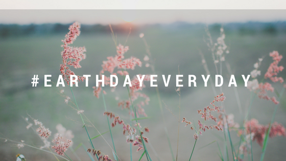 6 Doable Ideas on How to Celebrate Earth Day, Every Day